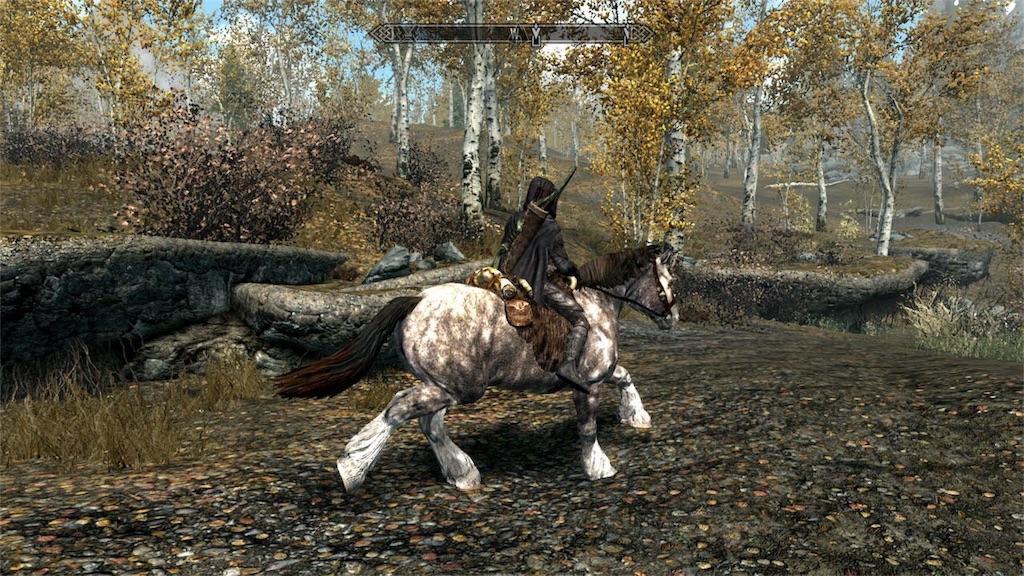 馬に乗るナイチン