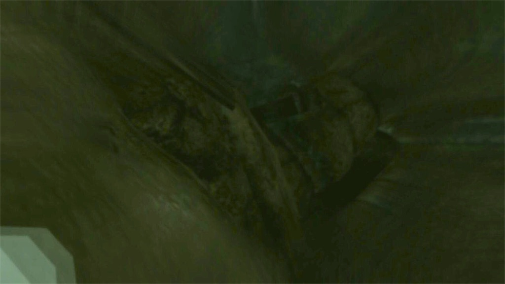 倒れるトカゲ